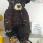 jeju-teddy-bear-museum-4