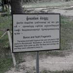 phnom-penh-killing-field-story-6