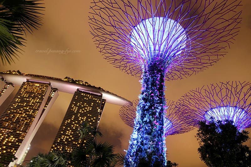 gardens-by-the-bay-marina-bay-sands-4