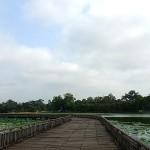 kandawgyi-park-3