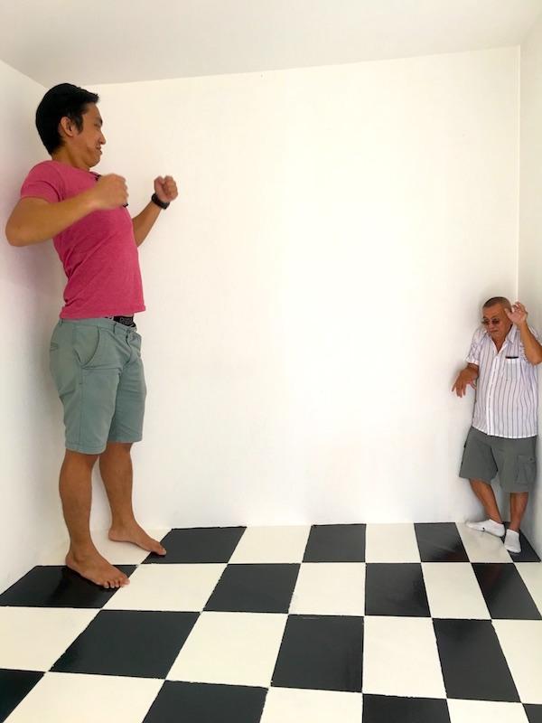 funtasy-house-Trick-Art-Museum-giant