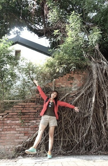 anping-tree-house