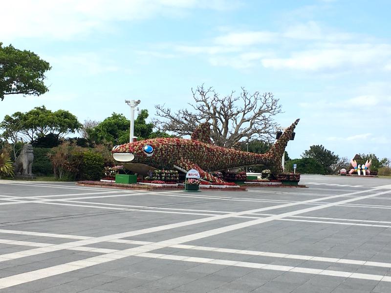 churaumi-park