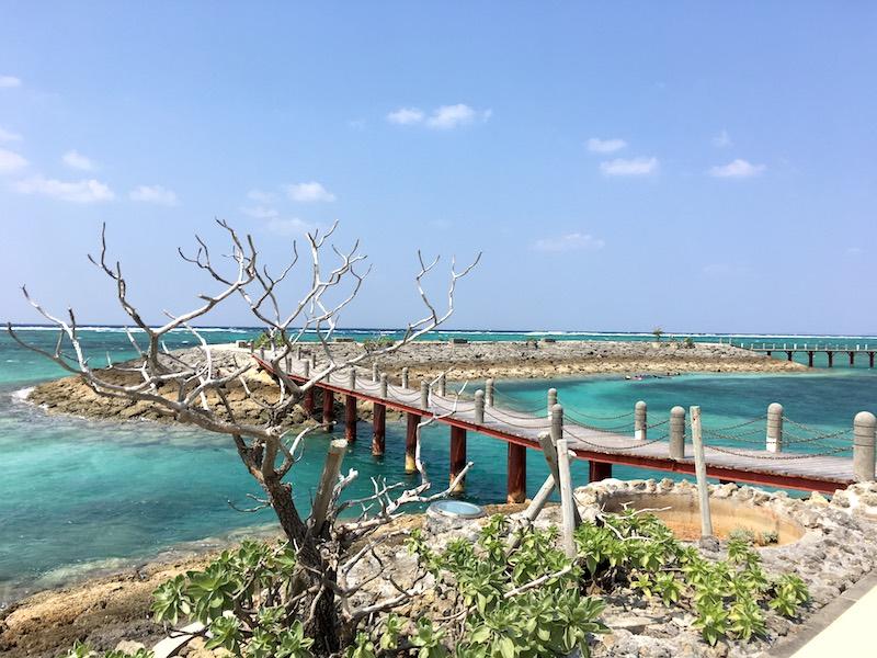 sheraton-sunmarina-bridge