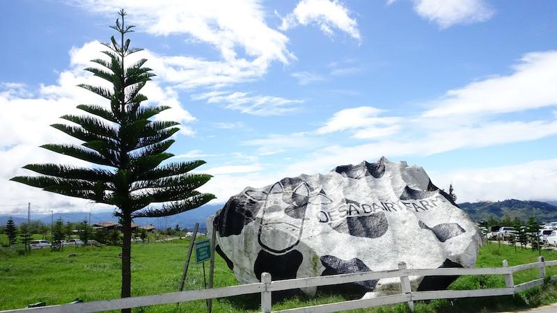 desa-dairy-farm