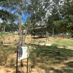 sabah-arnab-village-rabbit-park