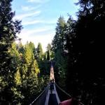capilano-suspension-bridge-back